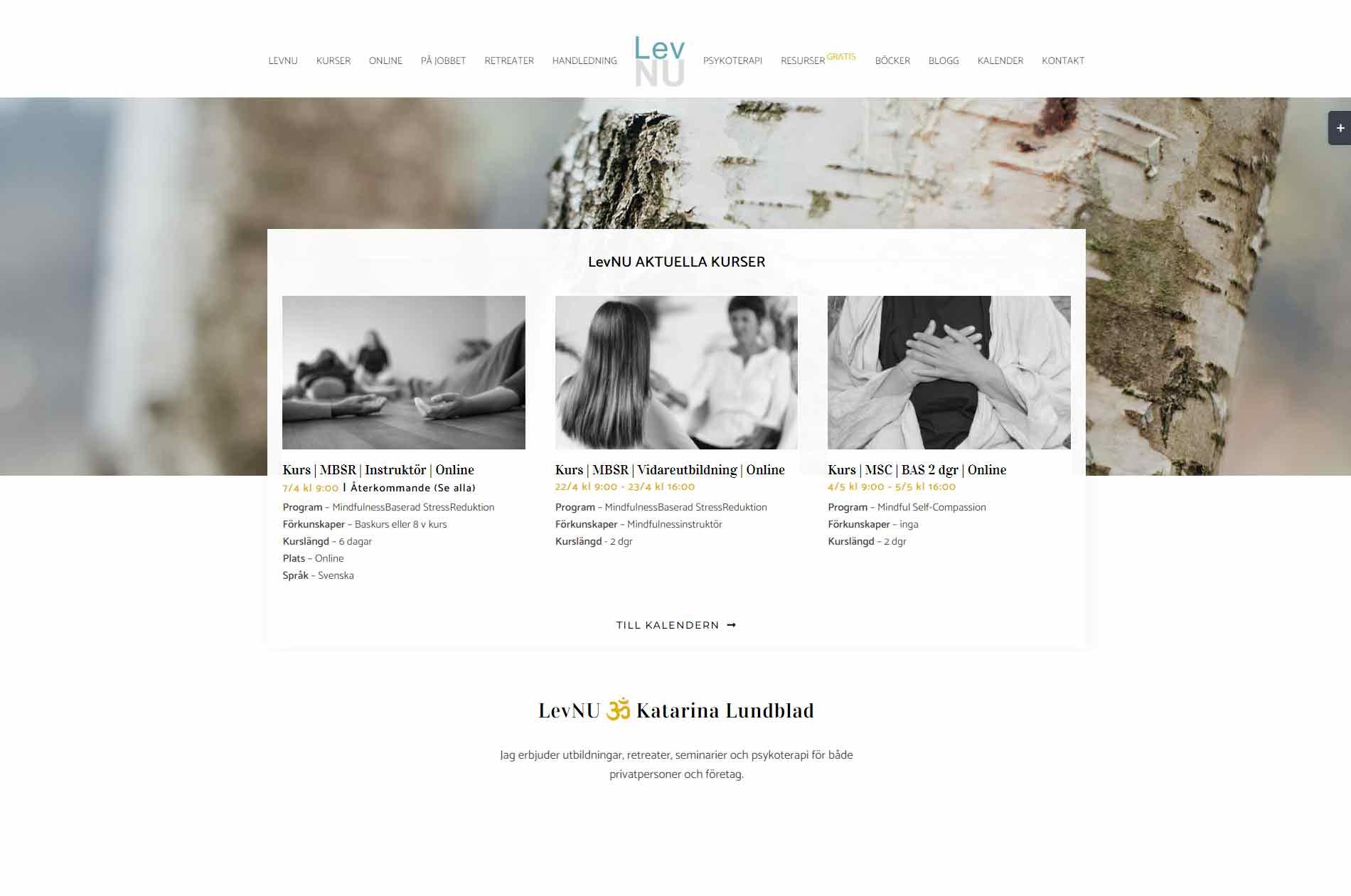 Anweb Web Desing LevNU Mindfulness