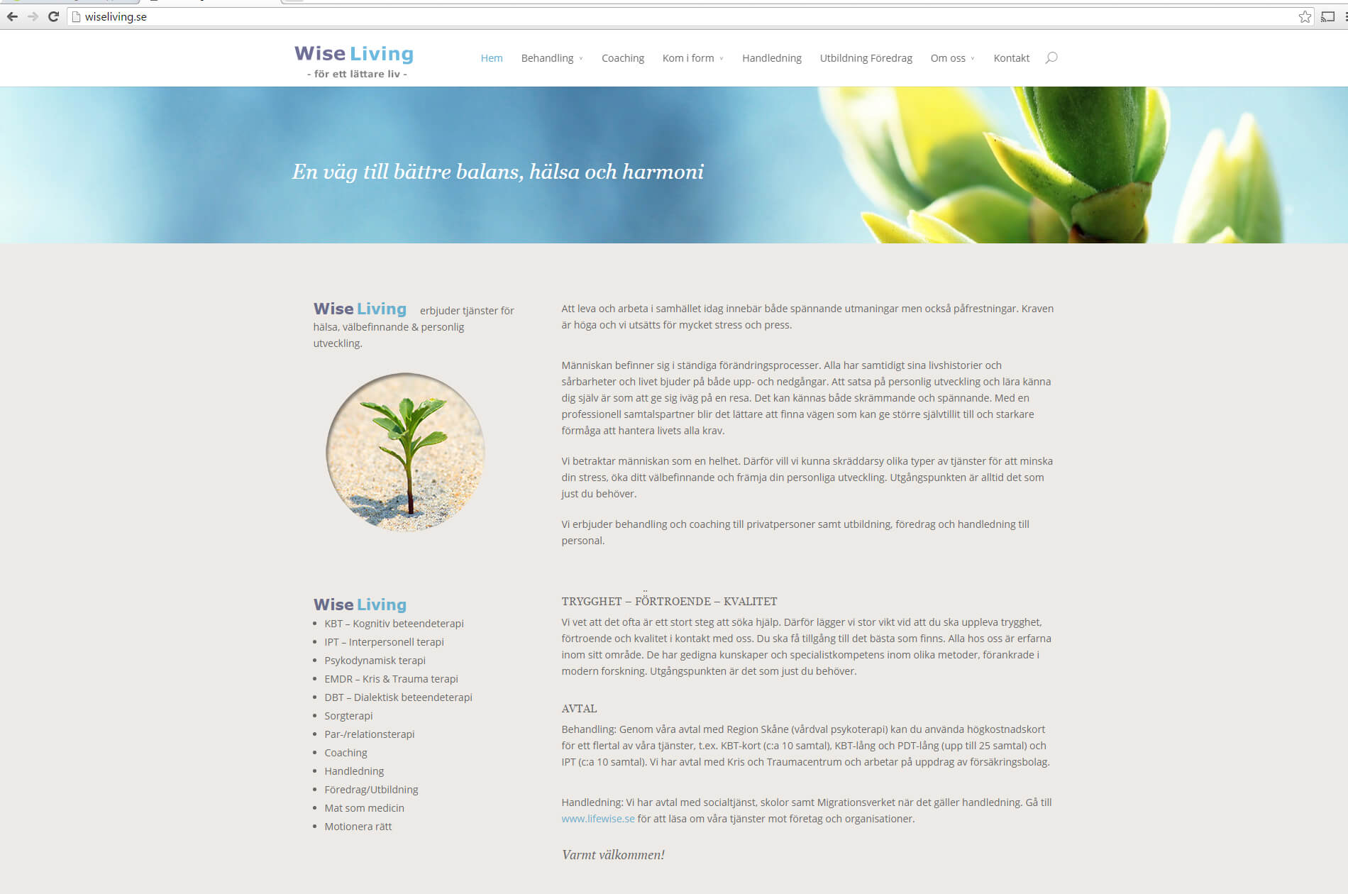 Web design anweb Wise Living Terapi Coaching