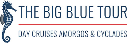 Graphic Design anweb Logo The Big Blue Tour